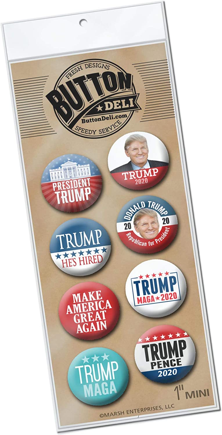 "Magnet DONALD TRUMP MIKE PENCE 2020  approx 3.5/"" x 6/"""