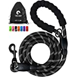 Taglory Rope Dog Leash 4 FT with Comfortable Padded Handle, Highly Reflective Threads Strong Dog Leash for Puppies and Small