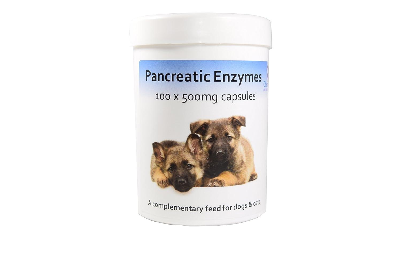 Cápsulas de enzimas pancreáticas x 100 Pancreatic Enzyme Capsules