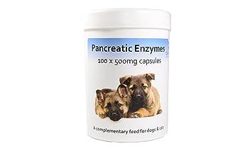 Comprar enzimas pancreaticas