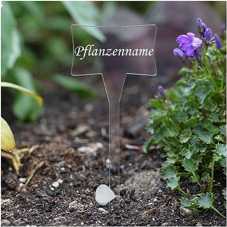 Acrílico cristal – Etiquetas para plantas (Esclavo transparente ...