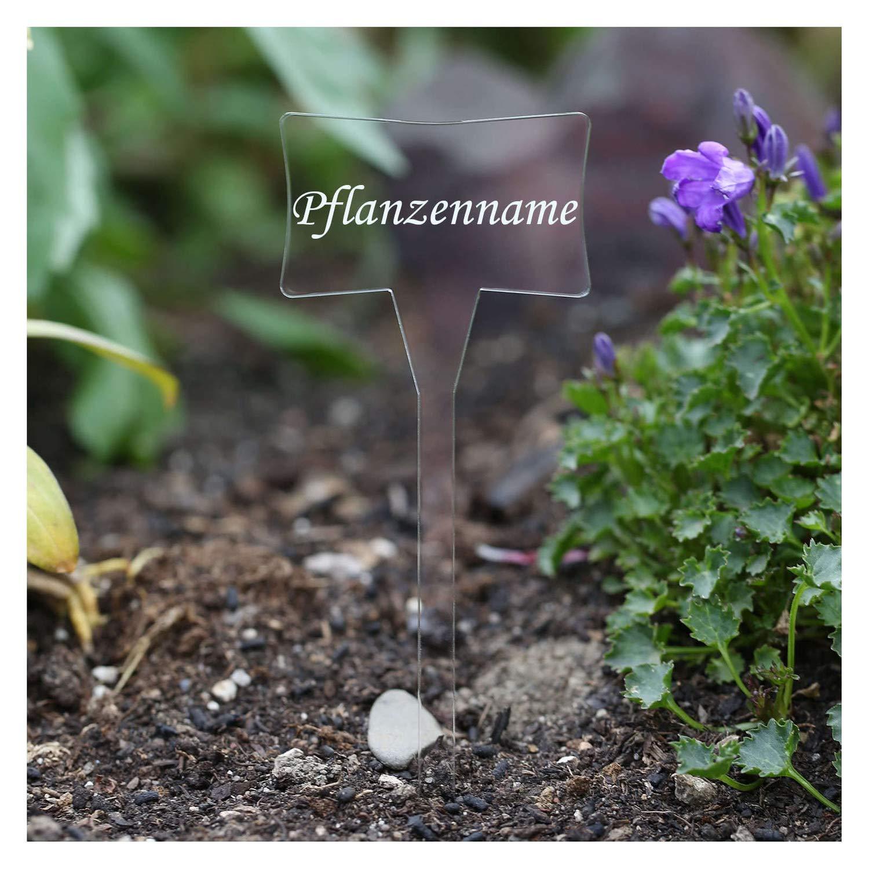 Acrílico cristal - Etiquetas para plantas (Esclavo transparente ...