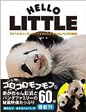 アドベンチャーワールドで生まれたあかちゃんパンダの奇跡: HELLO LITTLE 〈DVD付〉