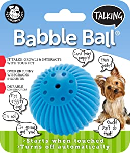 Pet Qwerks Talking Babble Ball for Fetch
