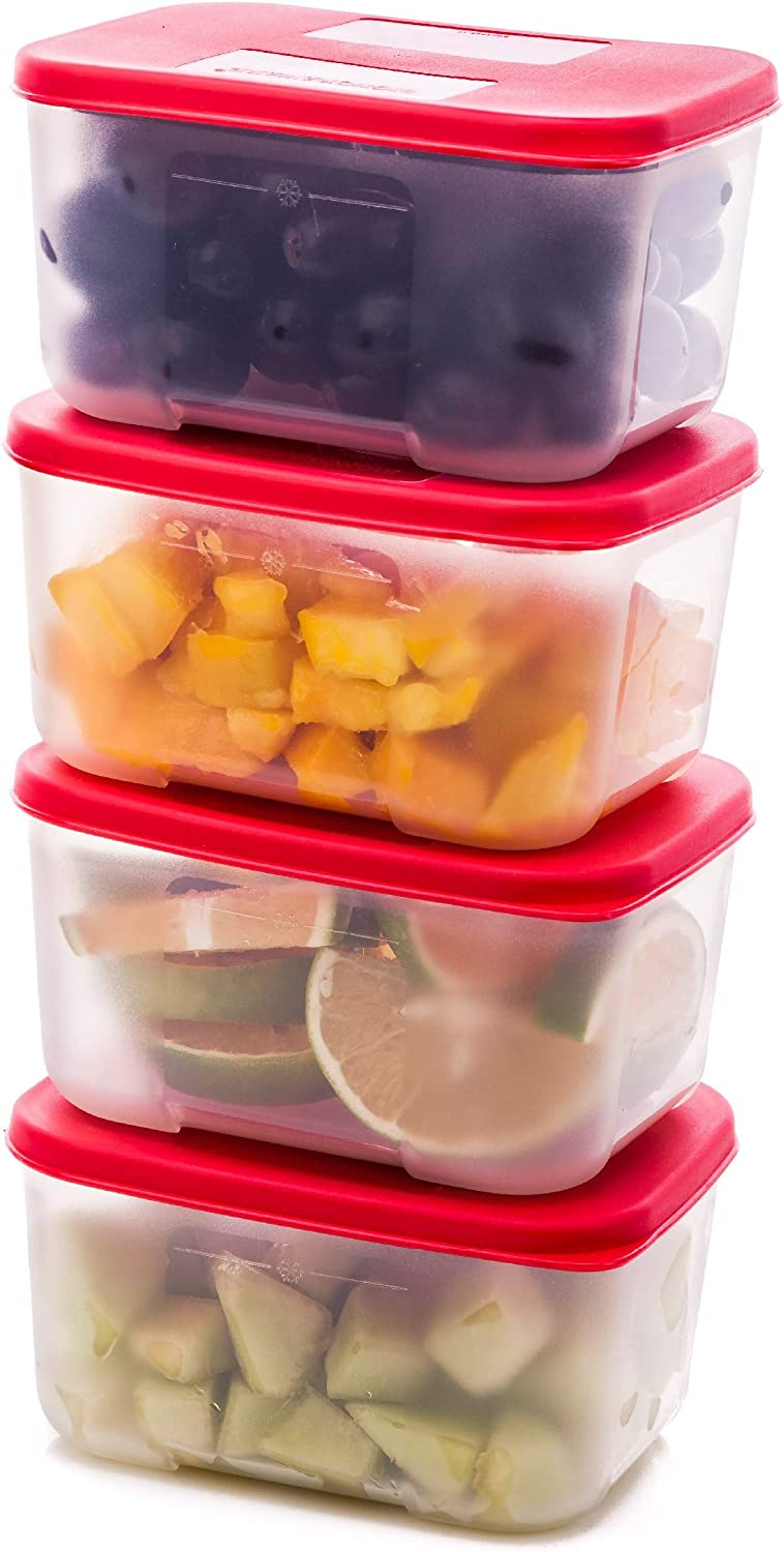 Quicker Defrost- Reusable Freezer Containers with Lids Set of 4-23.5 oz. for Soups, Leftovers, Meal Prep, Food Storage Airtight Food Storage Containers With Lids Plastic Freezer Containers Jars