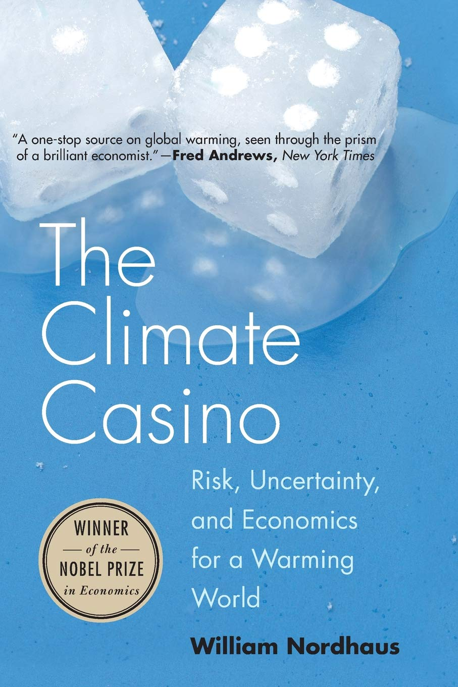 Economic Choices in a Warming World
