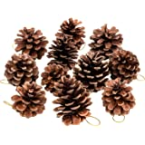 Whaline 25 Pcs Christmas Natural Pine Cones, Rustic Pinecones Bulk Ornaments with String for Crafting for Home Accent Decor,