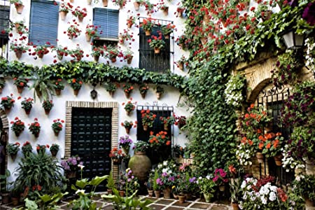 zhangshifa Puzzles 1000 Pieces,Andalucía España Córdoba Patio Edificio Casa Bokeh Rompecabezas De Paisajes Naturales,Juego De Jigsaws Puzzle para Niños Adultos-75 * 50Cm(Puzzle De Pintura): Amazon.es: Hogar