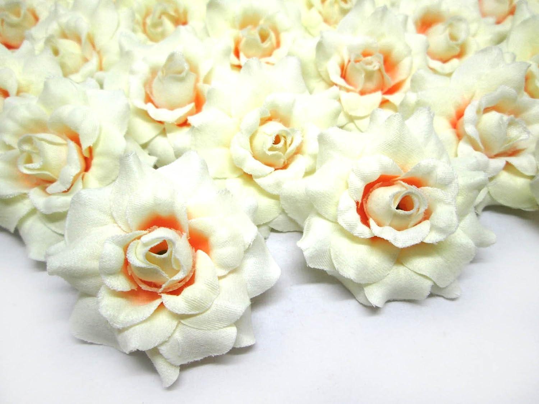 Amazon 24 Silk Cream Roses Flower Head 175 Artificial