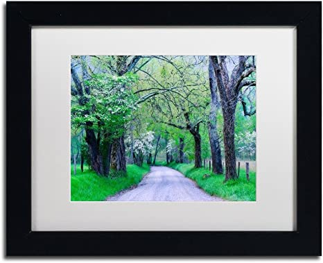 Amazon Com Cades Cove Lane By Michael Blanchette Photography White Matte Black Frame 11x14 Inch Home Kitchen