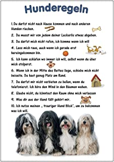 TIB 01 T3 Metall WARNSCHILD Schild Hundeschild Sign ++ TIBET Tibetan Terrier Tsang Apso