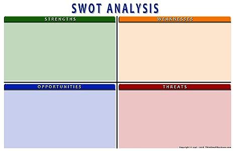 business plan analysis