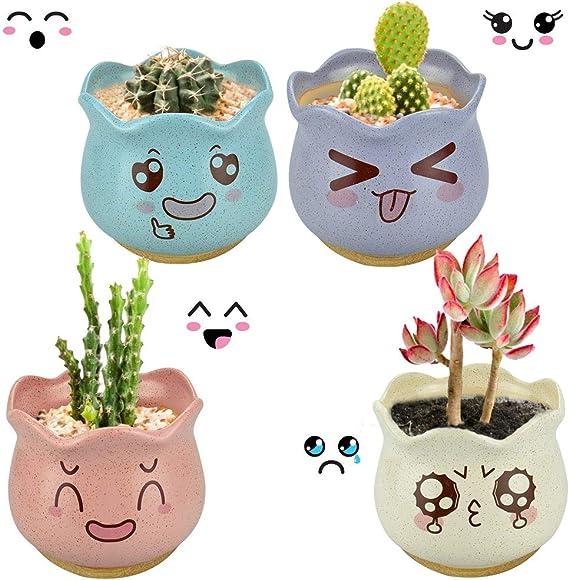EMAGEREN 4pcs Macetas para Cactus de Cerámica con Plato de Bambú, Tiestos de Ceramica Pequeños, Jardineras de Ceramica, 4 Colores, 9cm, Mini Maceteros con Pintura Mona para Planta Suculenta: Amazon.es: Jardín