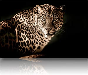 Omni Studio - Closeup Leopard - Wildlife Canvas Wall Art - Modern Home Décor - Stretched & Ready to Hang - (30x20 inches)