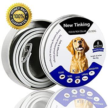 NEW TINKING Adjustable Flea/&Tick Collar Anti Insect Cat Dogs 8 Month Protected