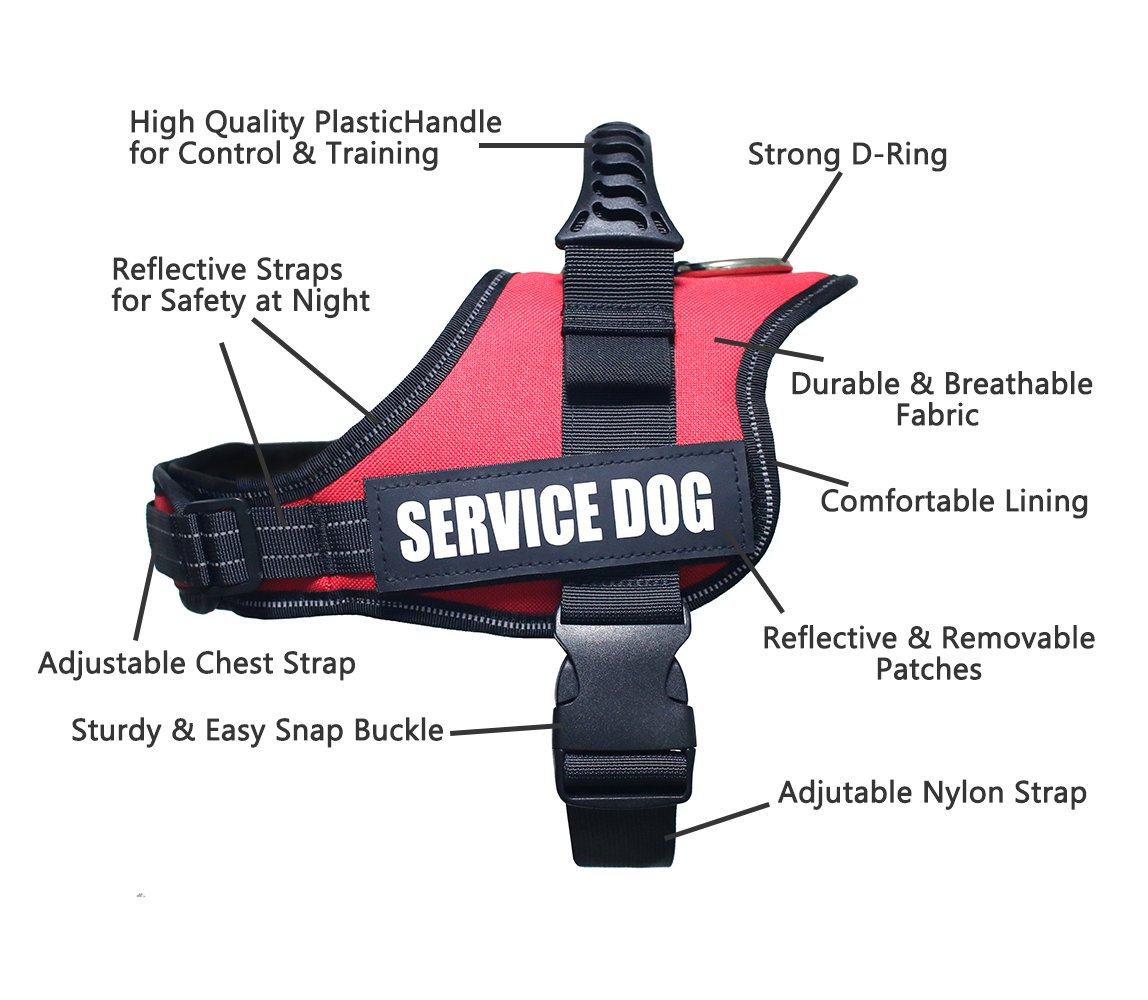 Amazon.com : Dog Harness Vest Medium - Heavy-duty Adjustable Padded, with Reflective Straps, Red : Pet Supplies