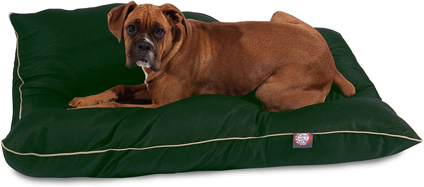 35x46 Green Super Value Pet Dog Bed By Majestic Pet Products Large : Pet Supplies