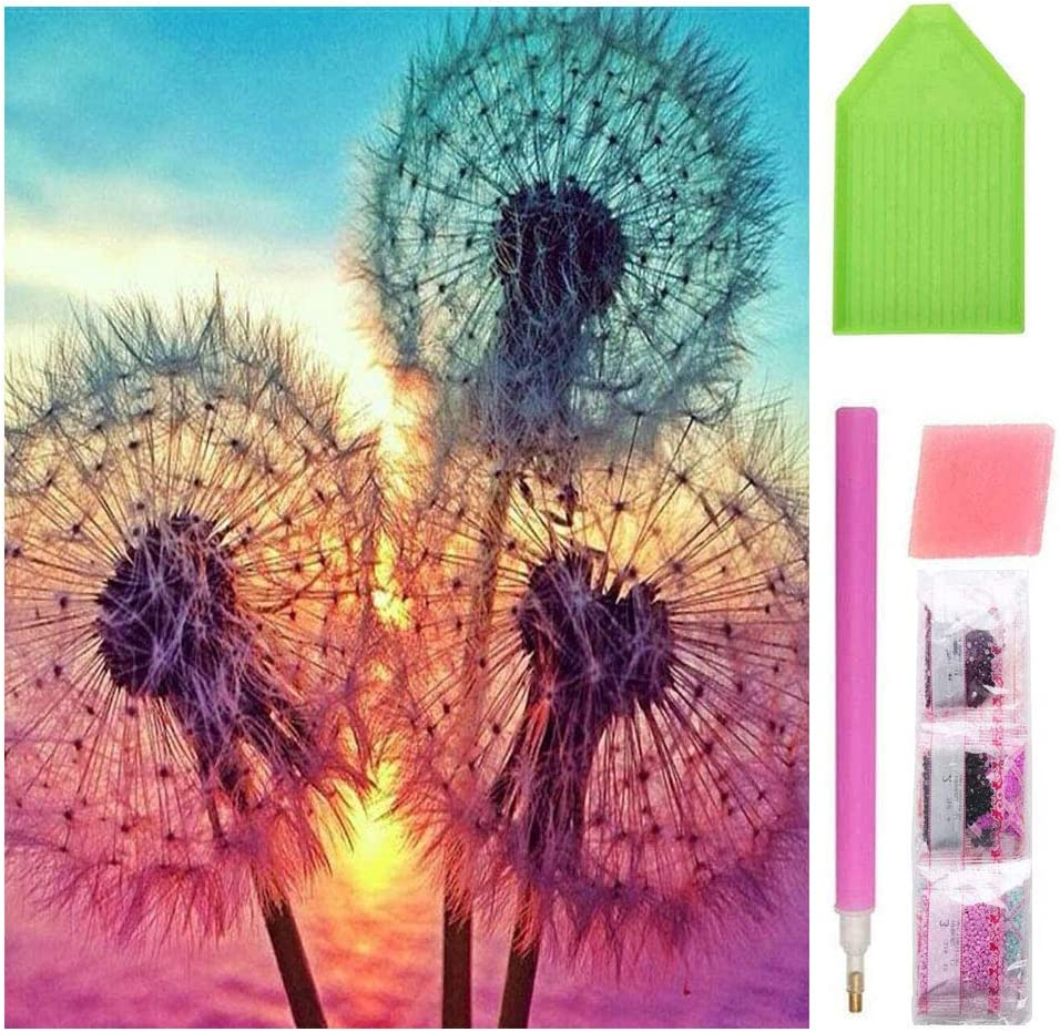 5D DIY Diamond Painting Kits for Adults Paint by Numbers Full Drills Rhinestone