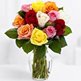 ProFlowers Multi-Colored Rainbow Roses with Vase, 12 Count