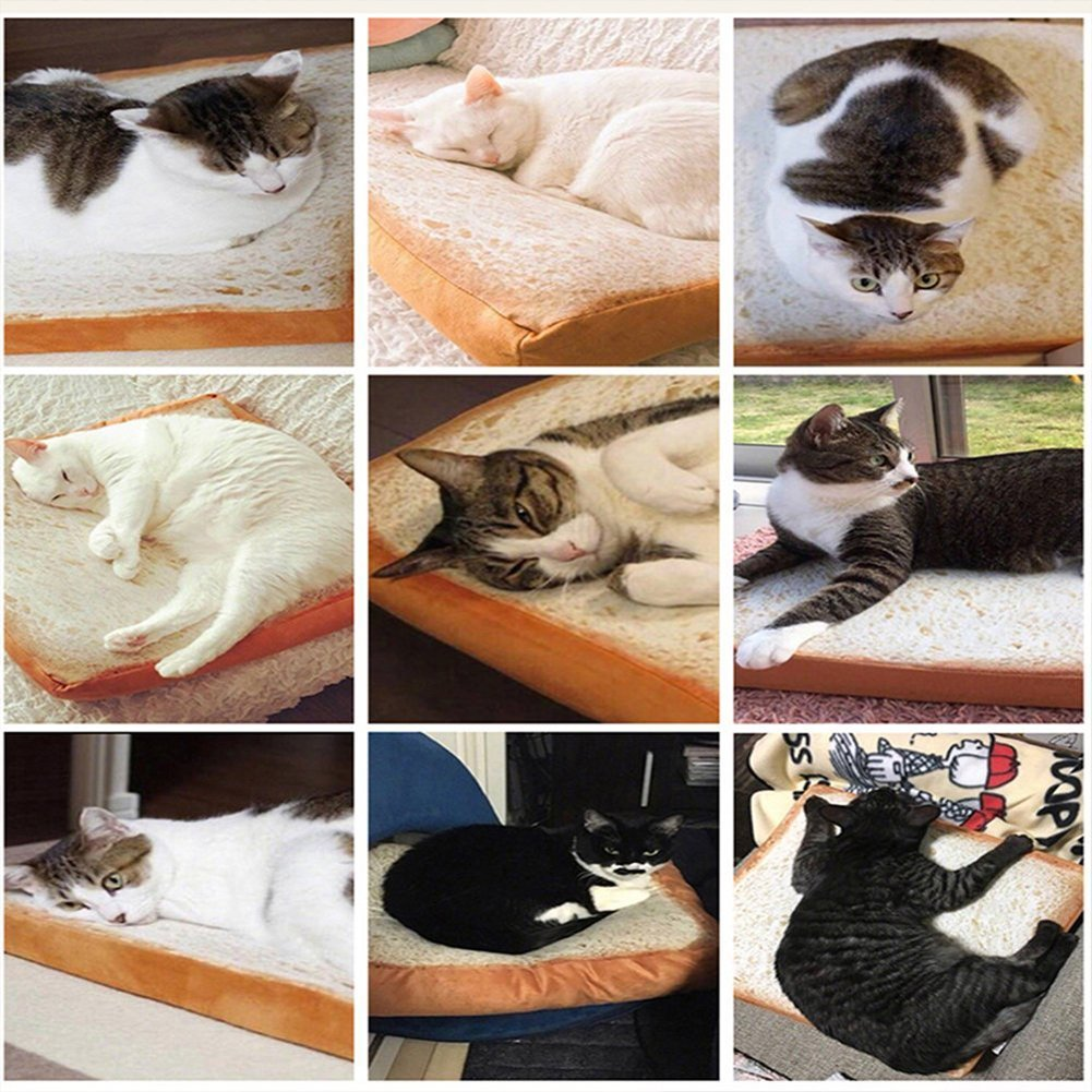 Dofover Soft Cat Cushion Bed Bread Pet Mattress Bed Mats Bedding Pad for Small Medium Dogs & Cats,Sleeping Resting Playing Reading Pillow