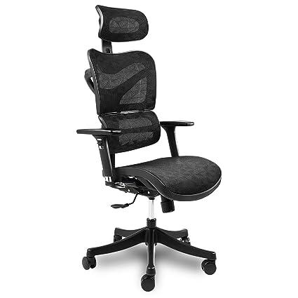 Fabulous Ergonomic Mesh Office Chair High Back With Adjustable Headrest Tilt Back Tension Lumbar Support Armrest Seat Breathable High End Argomax Computer Desk Home Interior And Landscaping Ologienasavecom
