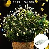 String Lights, LISOPO 8.25Ft /100 LEDs USB Powered