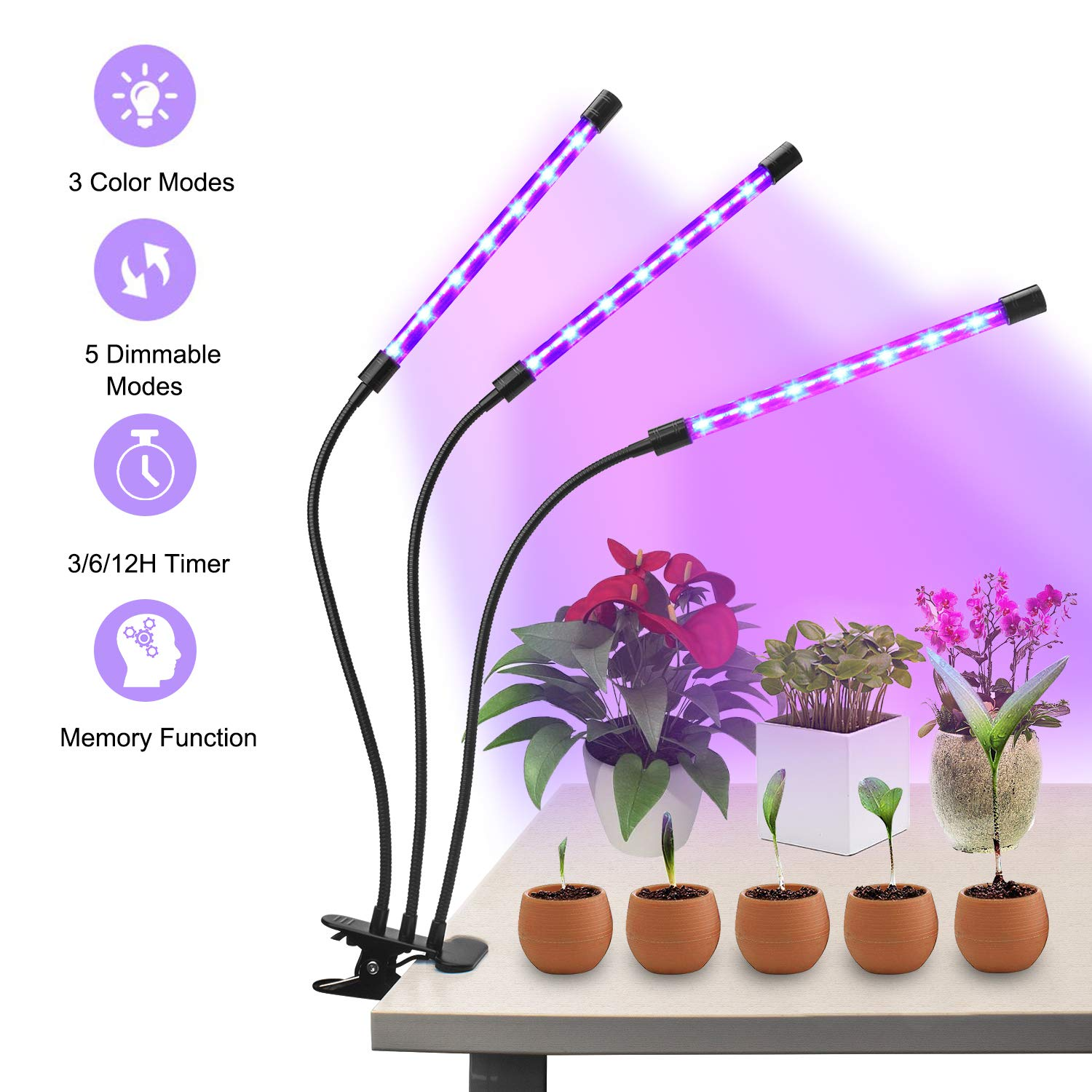 Beinhome 30W LED Grow Lamp Bulbs Plant Lights Full Spectrum, Auto ON Off with 3 6 12H Timer 5 Dimmable Levels Clip-On Desk Grow Lamp for Indoor Plants