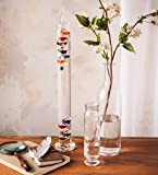 Wind & Weather Colorful Law of Physics Indoor Glass Galileo Thermometer
