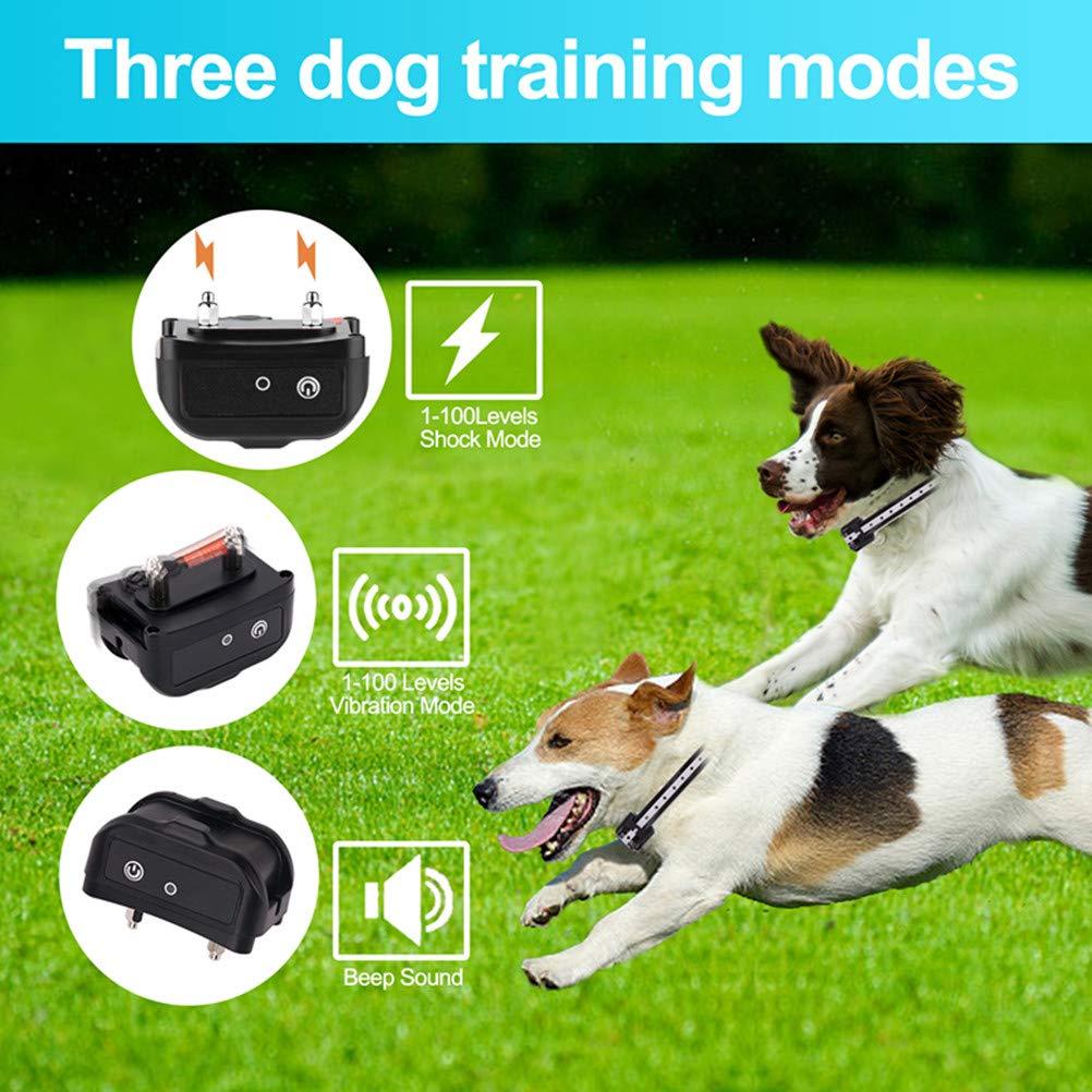 Zapuno Dog Bark Collar Bark Collar 100/% Waterproof No Bark Collar Anti bark Collar with Beep Vibration and No Harm Shock Smart Detection Bark Collar for Small Medium Large Dog