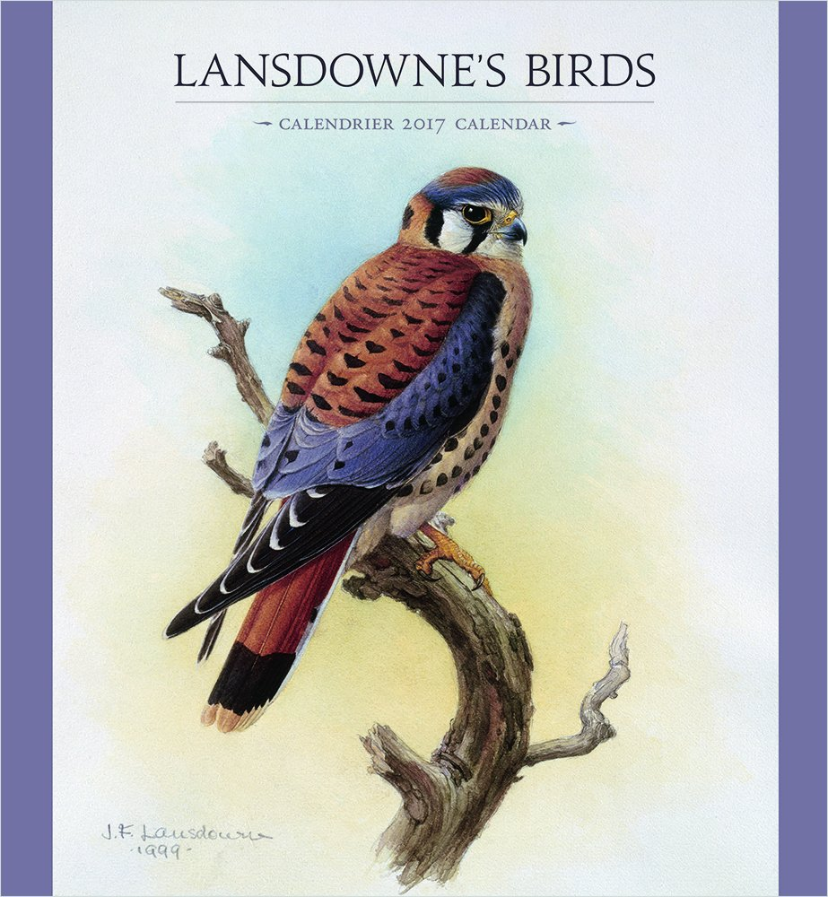 2017 Lansdownes Birds Wall Calendar English And French Edition Lansdowne J Fenwick 9780764973628 Amazon Com Books
