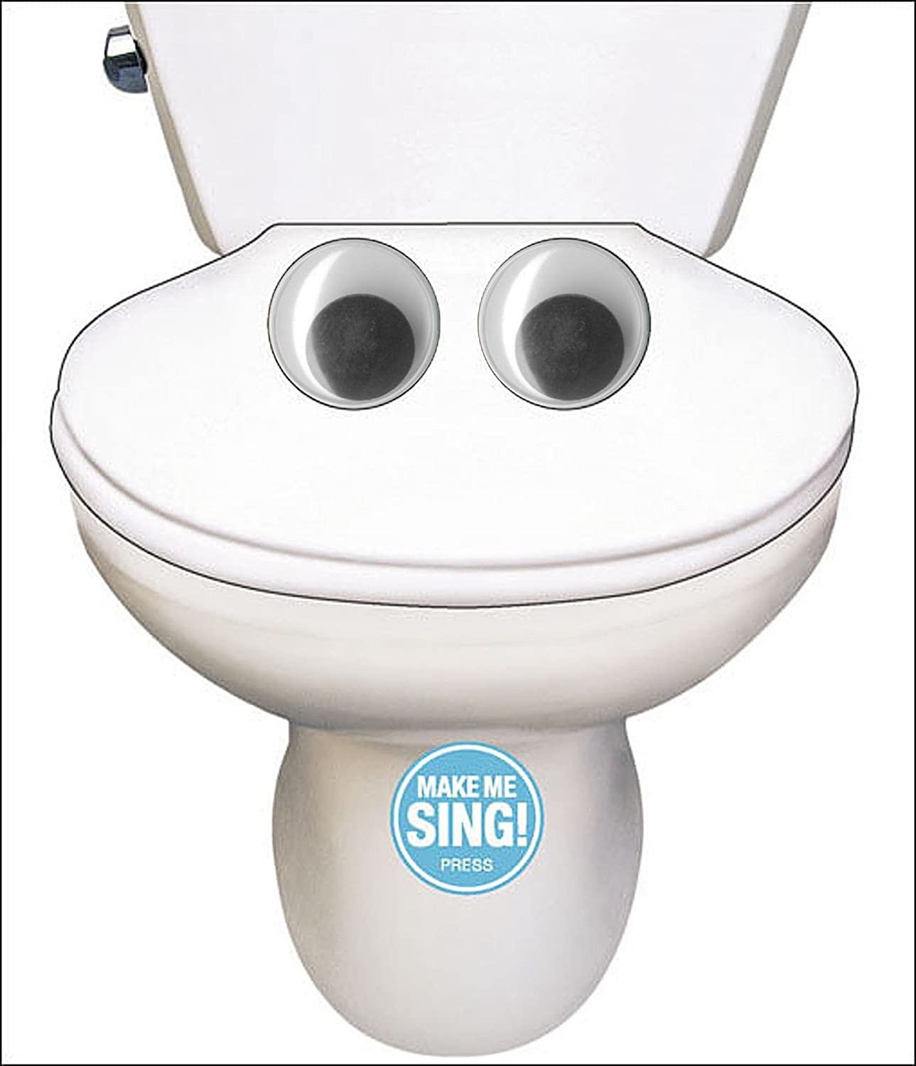 Make Me Sing The Toilet Song Birthday Sound Card Amazon