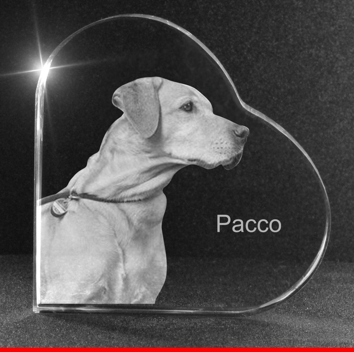 VIP-LASER 2D GRAVUR Glasherz L mit Deinem Hundefoto Hund graviert ...