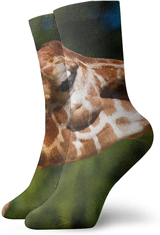 WEEDKEYCAT Giraffes Adult Short Socks Cotton Fun Socks for Mens Womens Yoga Hiking Cycling Running Soccer Sports