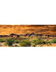 Reptile Habitat, Terrarium Background, Orange Desert Sky with Cactus - (Various Sizes) (18x48)