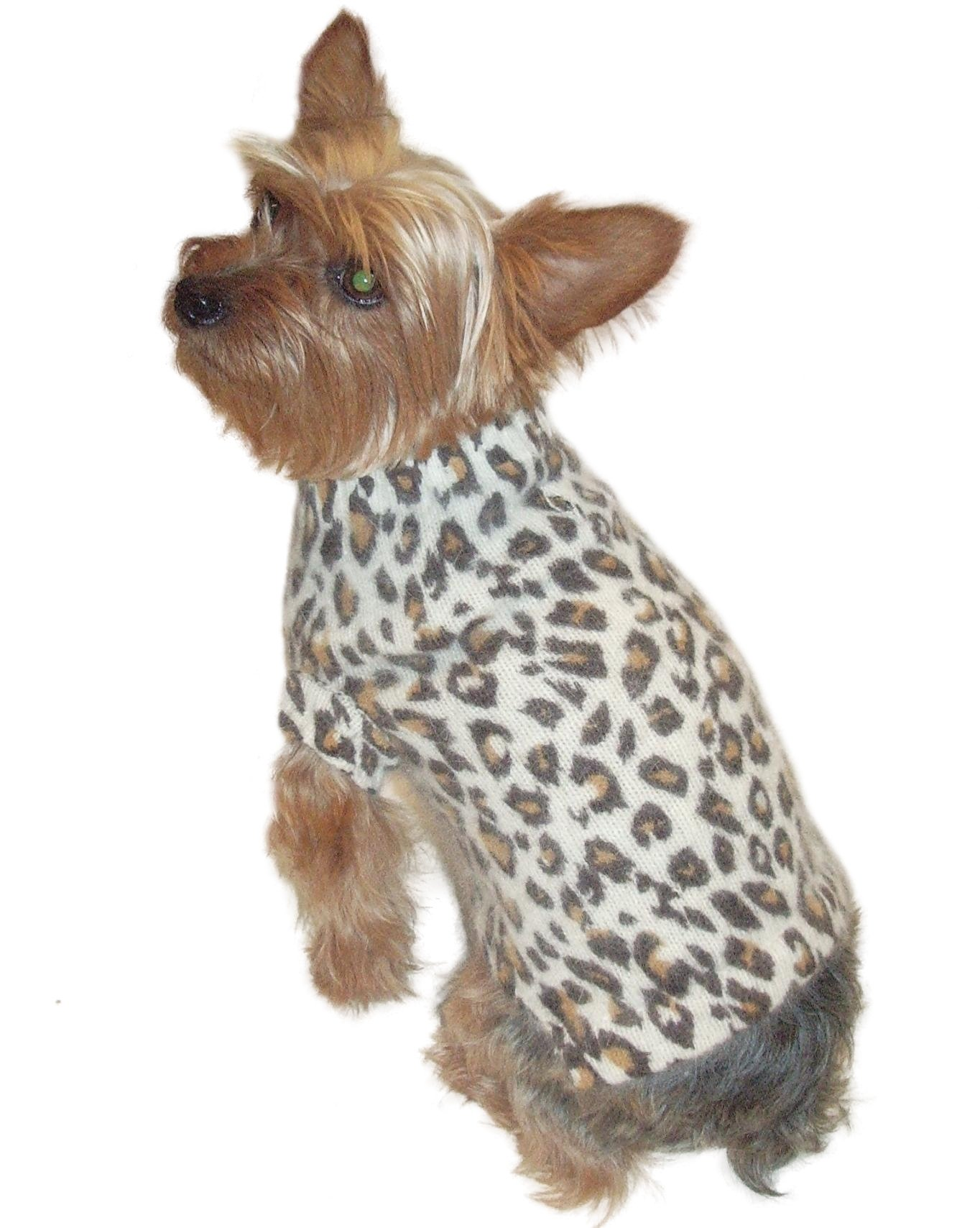 Luxury Animal Instincts Mock Neck, Angora Blend, Ivory Leopard, S by The Dog Squad