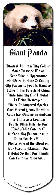 oso Panda Marcador, relleno regalo de Navidad relleno Marcador, marca de libro de la media aa4275