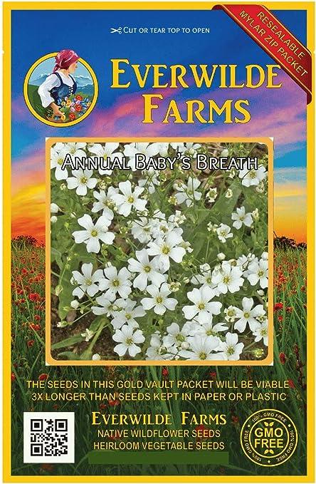 1 Oz Annual Baby/'s Breath Wildflower Seeds Everwilde Farms Mylar Seed Packet