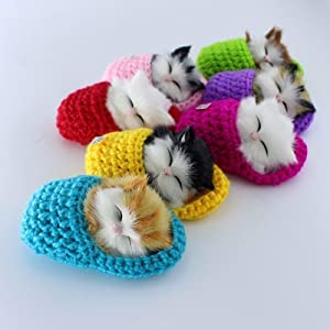 7Pcs Cute Star Sleeping Cat in Slipper Doll Toy Mini Kitten in Shoe with Meows Sounds Decor Ornament Hand Toy Gift Kids Boys Girls