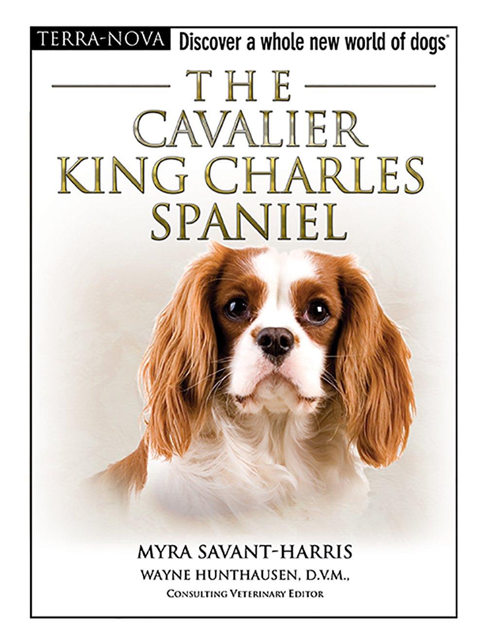 The cavalier king charles spaniel terra nova myra savant harris the cavalier king charles spaniel terra nova myra savant harris 9780793836796 amazon books nvjuhfo Choice Image