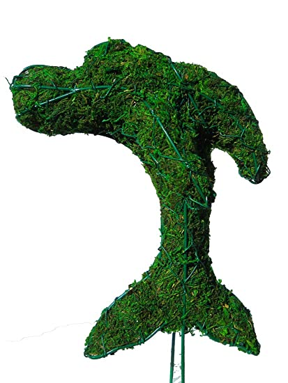Amazon.com: Dolphin 9 inches high w/ Moss Topiary Frame , Handmade ...