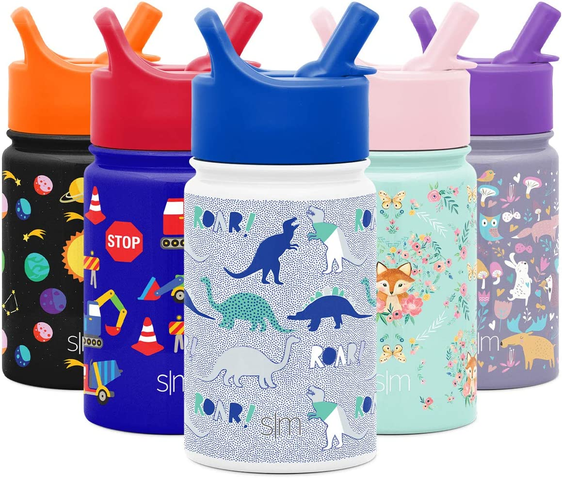 Dinosaur Roar Simple Modern 10oz Summit Kids Water Bottle Thermos With Straw Lid Dishwasher Safe Vacuum Insulated Double Wall Tumbler Travel Cup 18 8 Stainless Steel Kitchen Dining Storage Organization