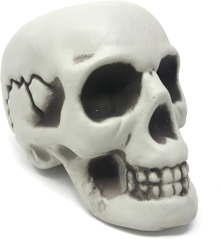 Modelo Figura de Cráneo Humano Decorativo – Ideal para Fiesta de Disfraces, Celebración de Halloween – Articulo, Figura de Calavera de Esqueleto - Accesorio de Adorno y Apoyo de Decoración