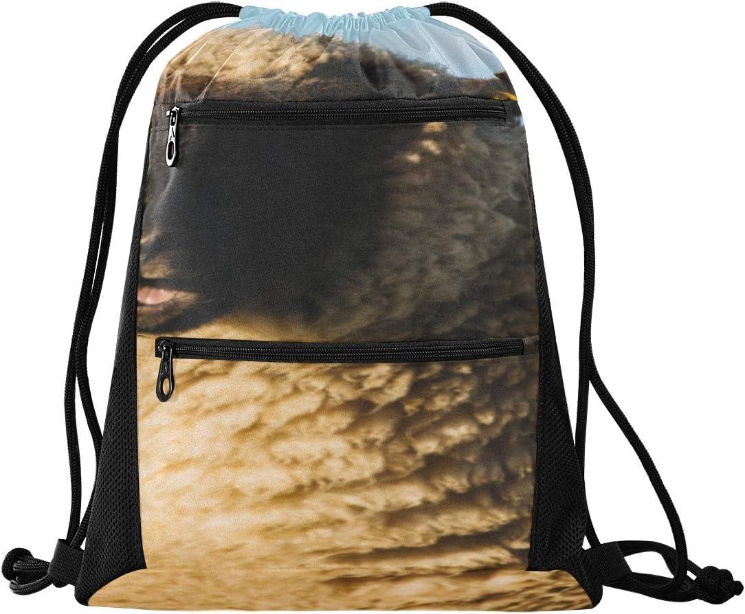 Gym Bag For Women Cute Countryside Sheep Animal Drawstring Bags For Women Drawstring Bag For Men Lightweight With Zipper Pocket Sports Athletic School Travel Gym Cinch Sack