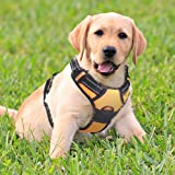Rabbitgoo Dog Harness Adjustable Pet Puppy Vest Harness with Refletive Breathable Soft Mesh no Pull Padded Easy Fit Handle Easy Control for XS Small Dogs & Durable Material Orange