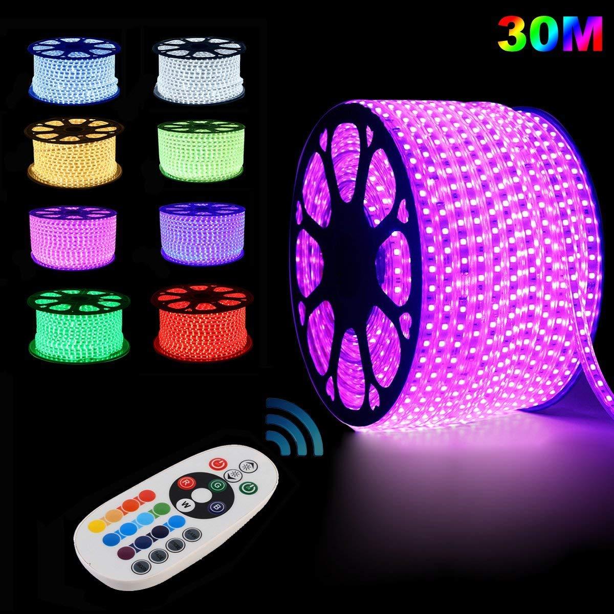 GrünSun LED Lighting Flexible Led Streifen LED Strips 30m RGB LED Lichterkette Lichterschlauch Fensterbeleuchtung für Weihnachten Hochzeit Dekoration mit 24 Tasten RF Controller