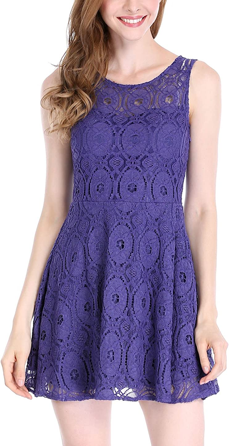 Allegra K Womens Floral Lace Sleeveless Crew Neck Flare A-Line Mini Dress