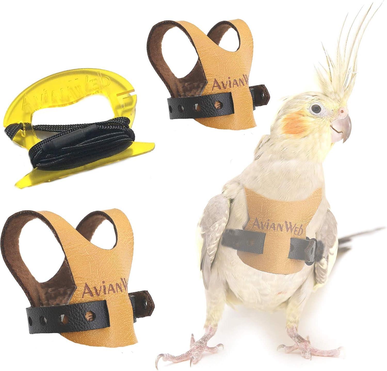 Avianweb EZ Rider Bird Harness /& 6 Ft Leash