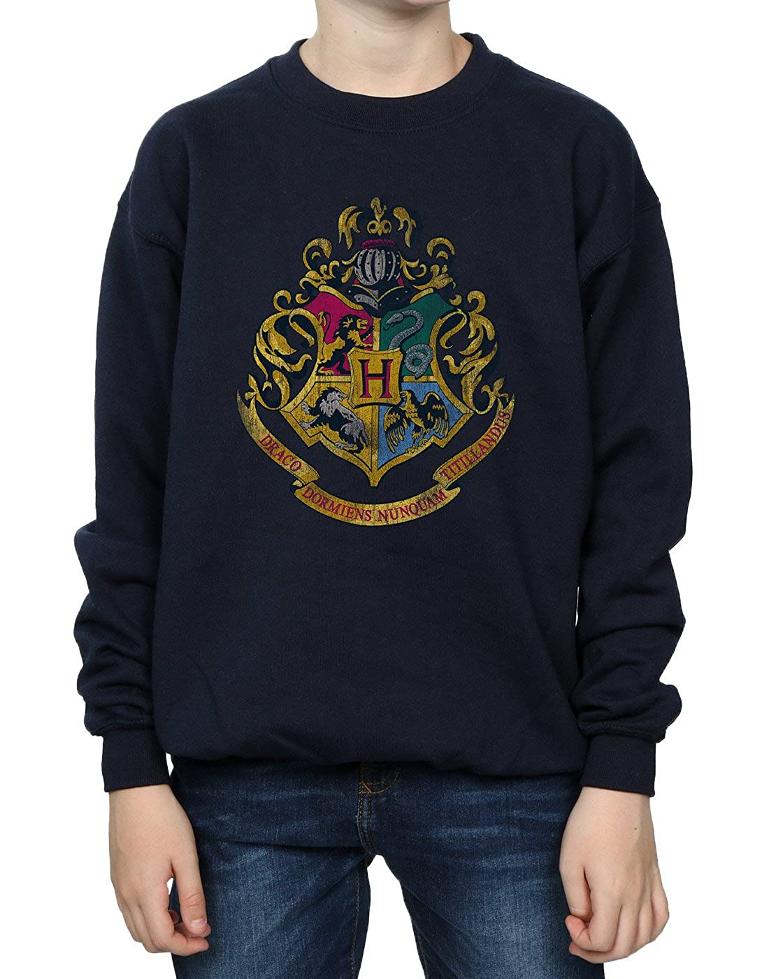 Harry Potter Boys Hogwarts Distressed Crest Sweatshirt