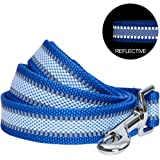 """Blueberry Pet Essentials 2020 New Reflective Back to Basics Dog Leash, Navy Blue, 5 ft x 3/4"""", Medium, Leashes for Dogs"""