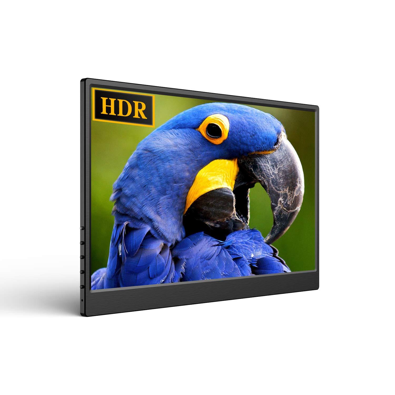 Monitor Portatil USB-C 13.3 1920x1080 IPS HDR  EVICIV